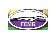 logo-fede-castillalamancha
