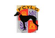 logo-fede-castillaleon