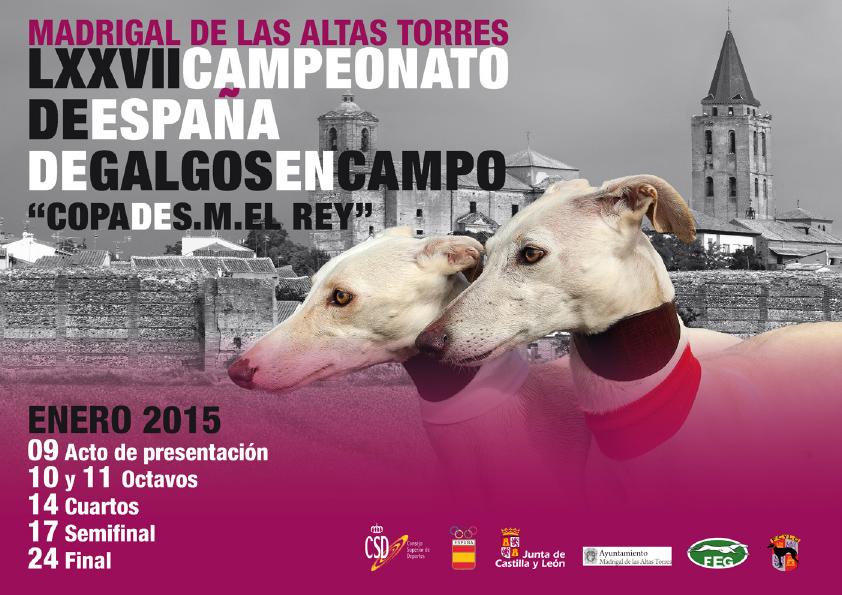 2015 Campeonato de España de Galgos en Campo
