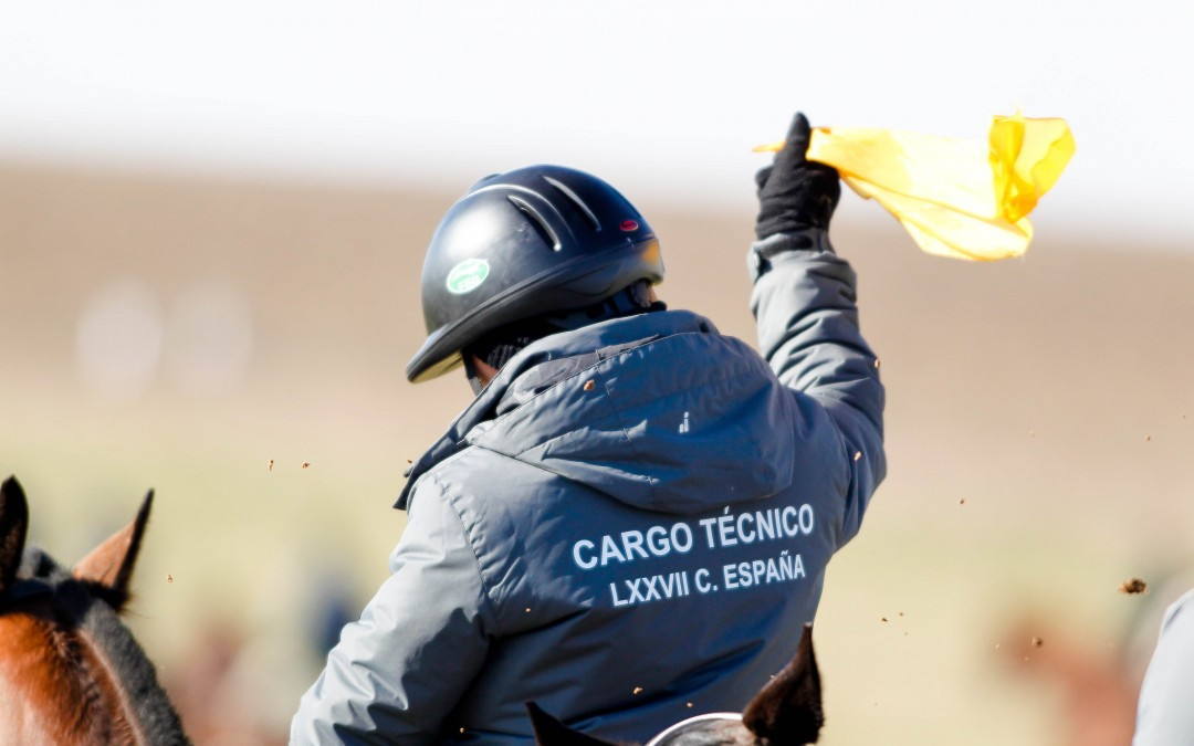 Cargos técnicos para el LXXVIII Cto. de España