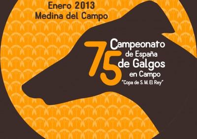 2013 Campeonato de España de Galgos en Campo