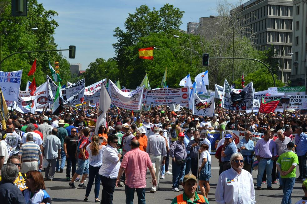 Cerca de 300.000 personas en la manifestación 5J de Madrid