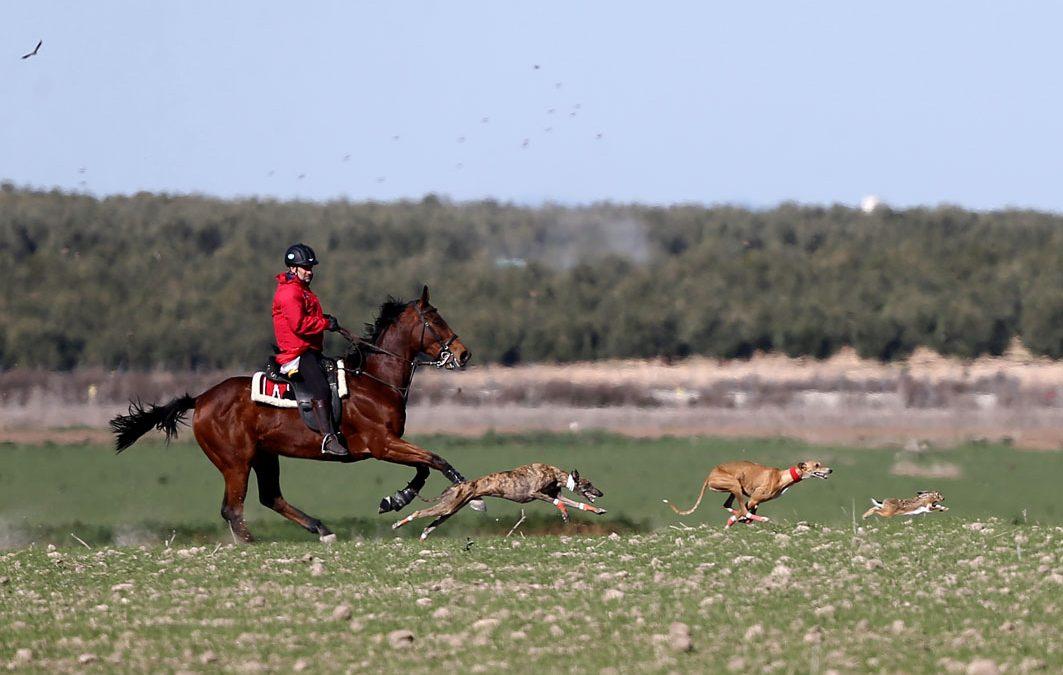 GALERÍA FOTOGRÁFICA OCTAVOS DE FINAL