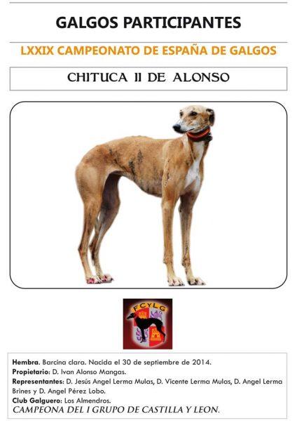 CHITUCA II DE ALONSO