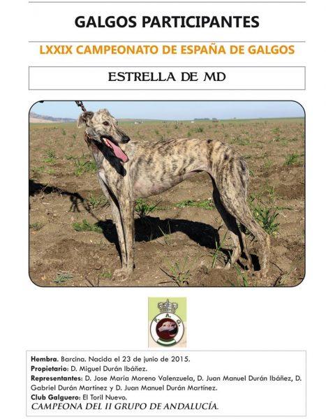 ESTRELLA DE MD