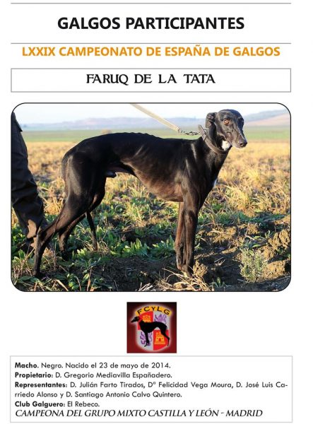 FARUQ DE LA TATA