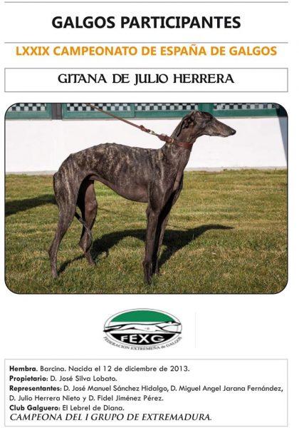 GITANA DE JULIO HERRERA