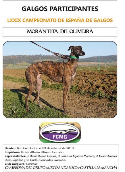 MORANTITA DE OLIVEIRA
