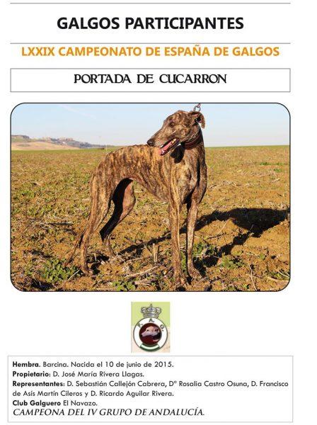 PORTADA DE CUCARRÓN