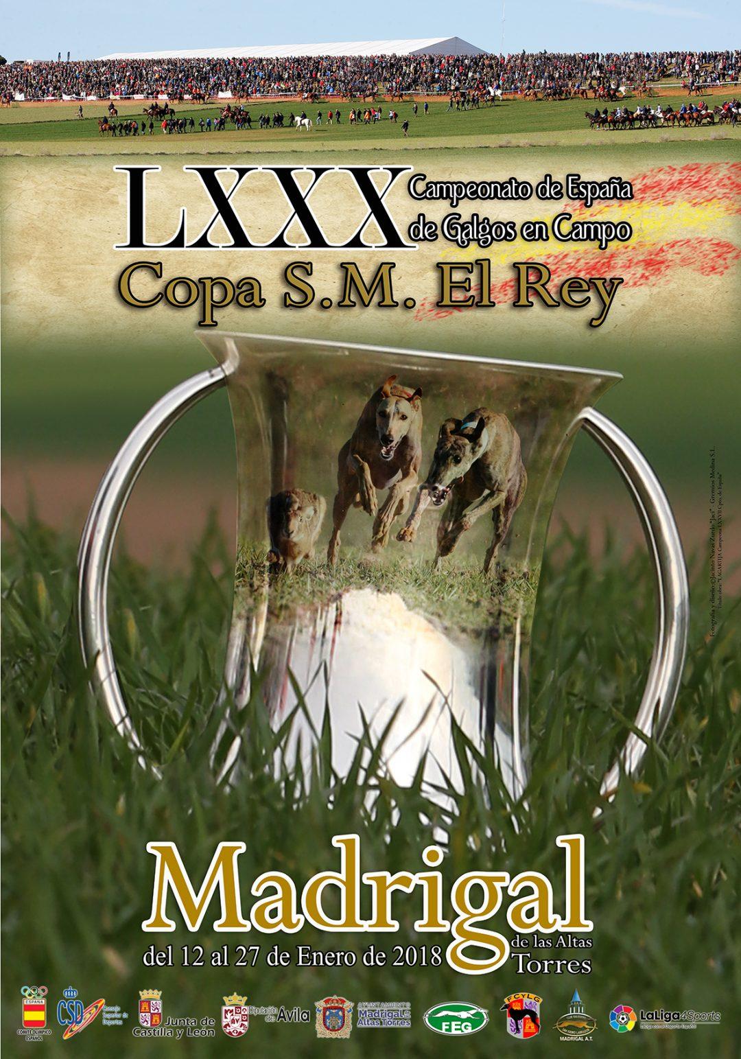 2018. LXXX Campeonato de España de galgos en Campo. Madrigal.