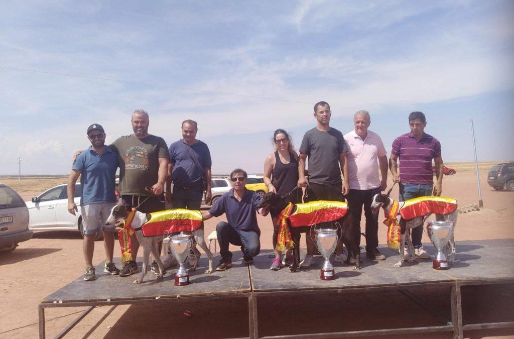 XXXIII CAMPEONATO DE ESPAÑA DE GALGOS EN CAMPO CON LIEBRE MECÁNICA