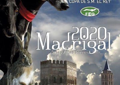 2020. LXXXII CAMPEONATO DE ESPAÑA DE GALGOS EN CAMPO COPA S. M. EL REY