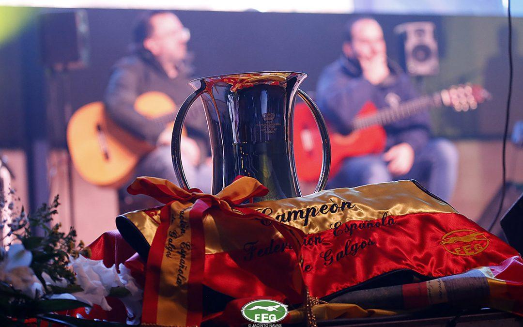 PREVIA FINAL DEL LXXXIII CAMPEONATO DE ESPAÑA DE GALGOS EN CAMPO, COPA S.M. EL REY